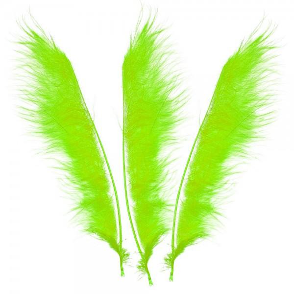 Tracer / Feather Pointer 12 Stück
