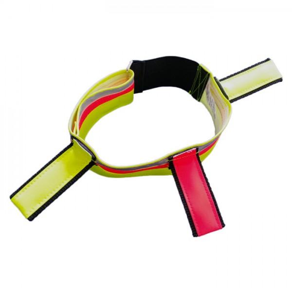 Hundesignalhalsband, 6cm breit, mit 3 Fahnen