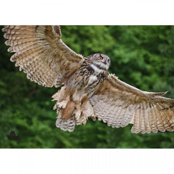Tierauflage fliegende Eule, 42 x 59 cm